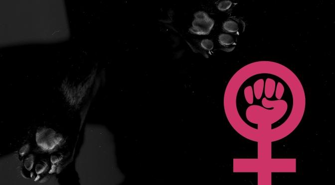 En särskild sorts feminism